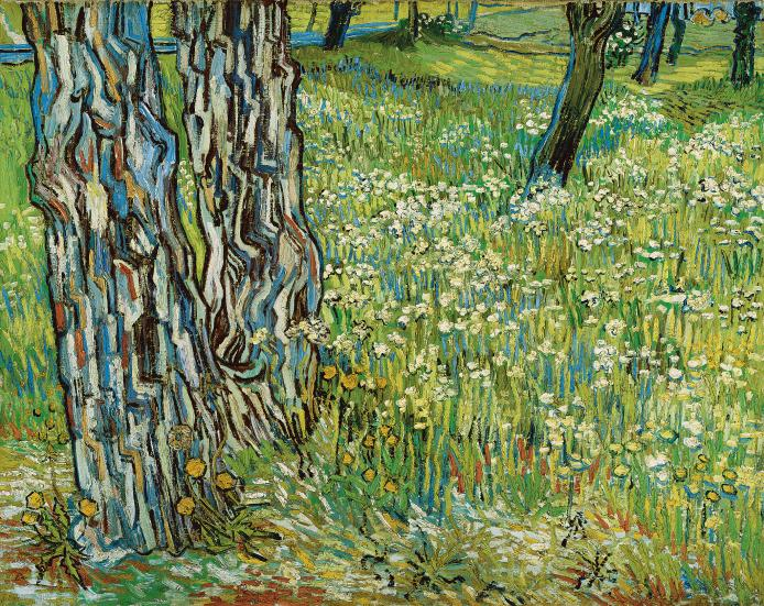 Tree trunks in the grass late April 1890